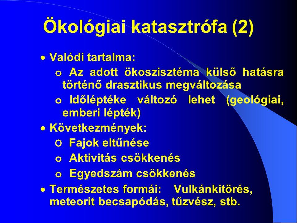 Ökológiai katasztrófa (2)