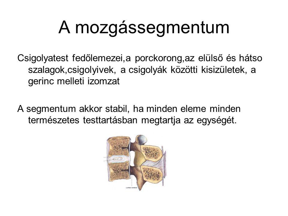 A mozgássegmentum