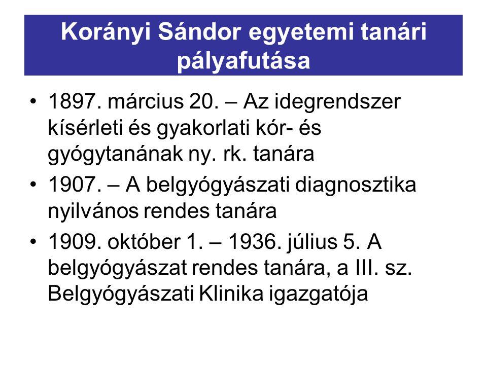 Korányi Sándor egyetemi tanári pályafutása