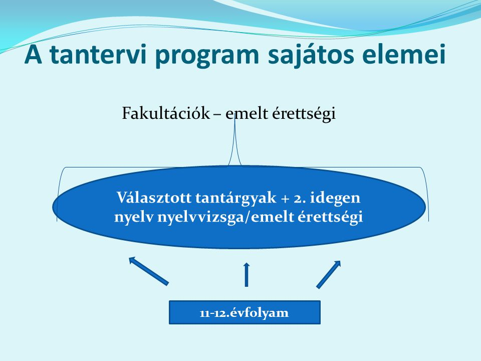 A tantervi program sajátos elemei