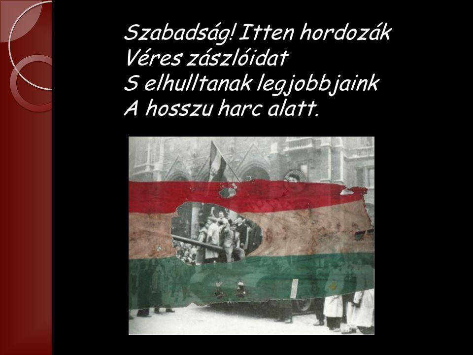 Szabadság! Itten hordozák Véres zászlóidat S elhulltanak legjobbjaink A hosszu harc alatt.
