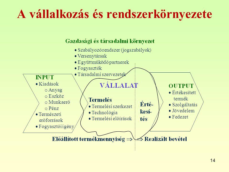 A vállalkozás és rendszerkörnyezete