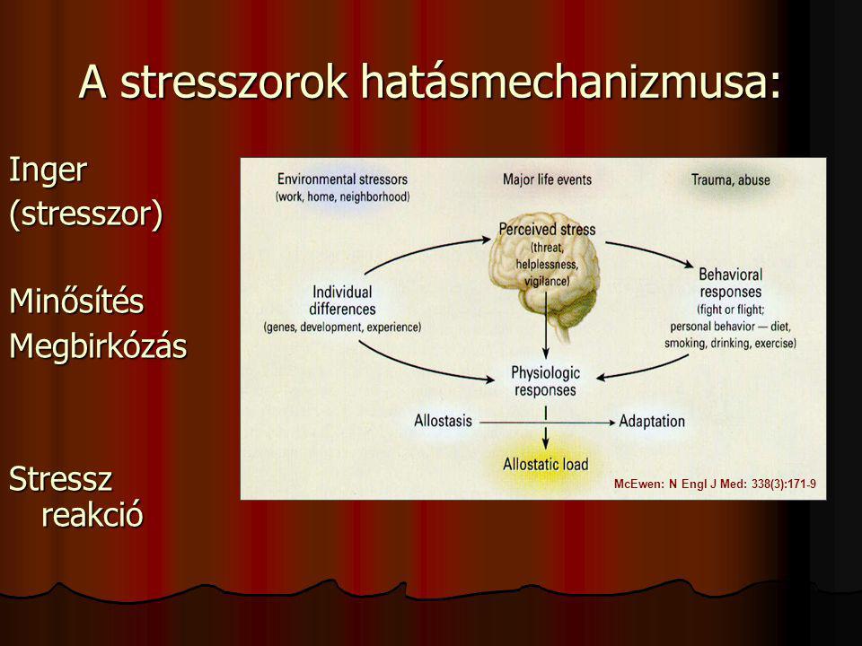 A stresszorok hatásmechanizmusa: