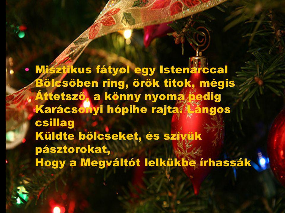 Misztikus fátyol egy Istenarccal Bölcsőben ring, örök titok, mégis Áttetsző, a könny nyoma pedig Karácsonyi hópihe rajta.