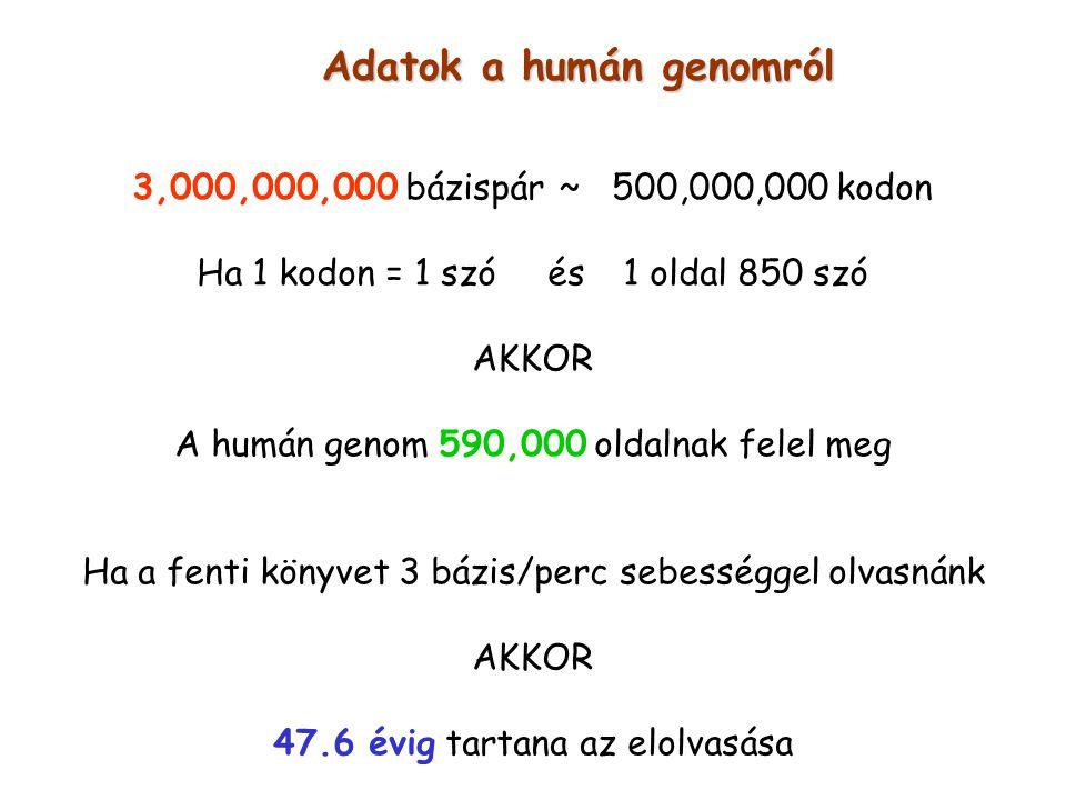 Adatok a humán genomról