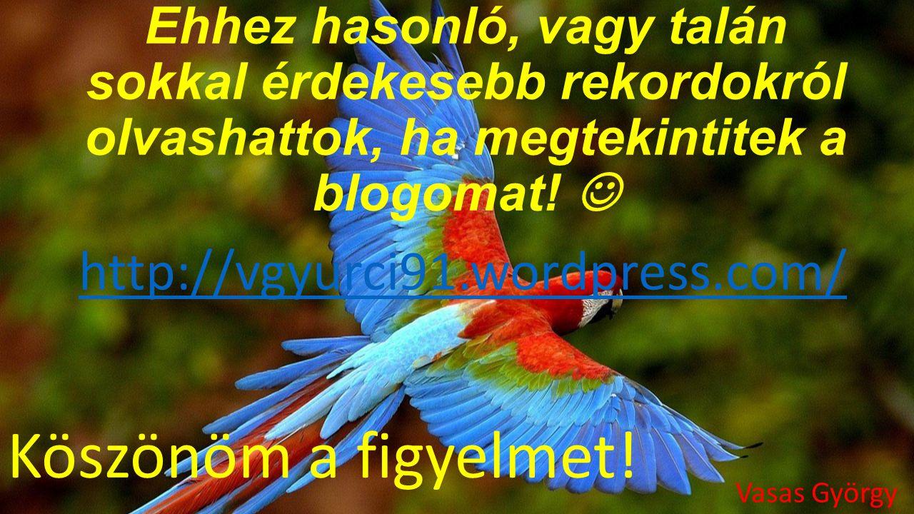 Köszönöm a figyelmet! http://vgyurci91.wordpress.com/