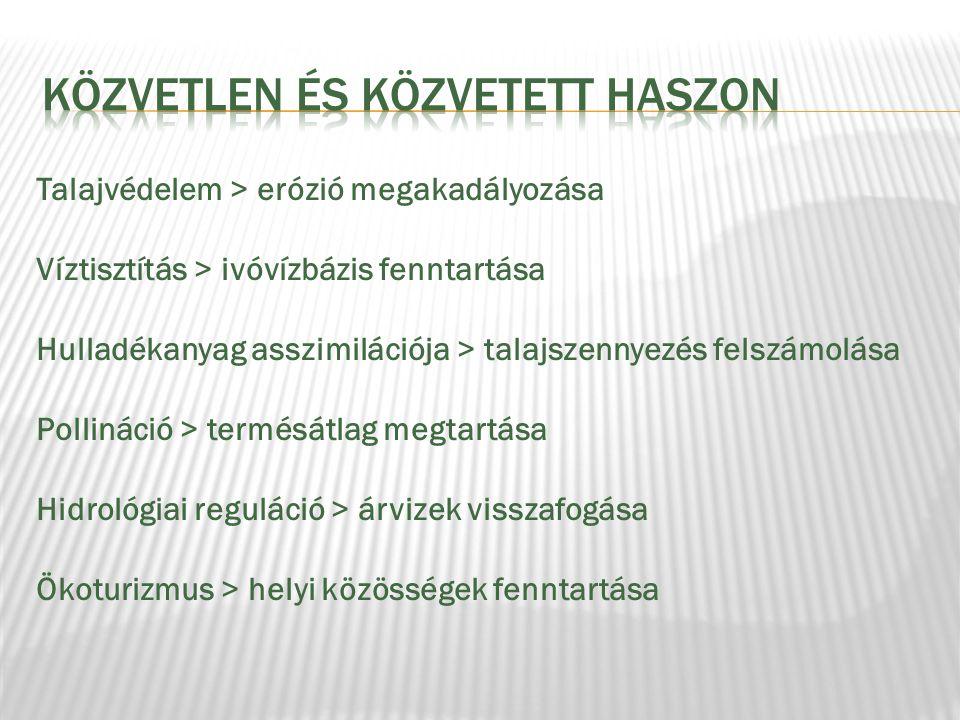 KÖZVETLEN ÉS Közvetett HASZON