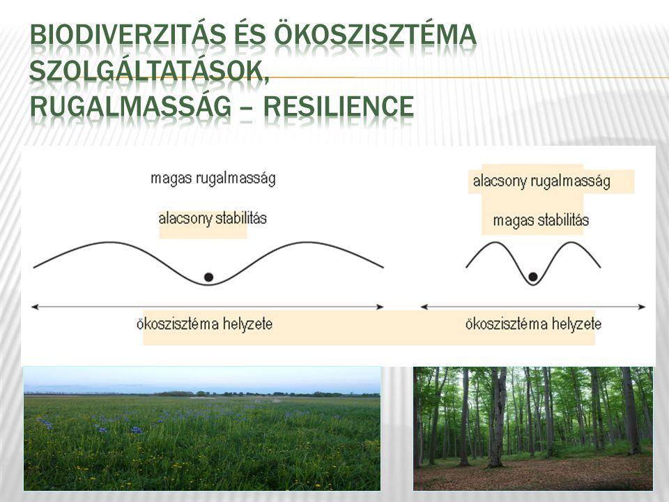 Biodiverzitás és ökoszisztéma szolgáltatások, RUGALMASSÁG – RESILIENCE