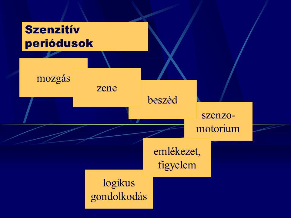 Szenzitív periódusok mozgás zene beszéd szenzo-motorium emlékezet, figyelem logikus gondolkodás