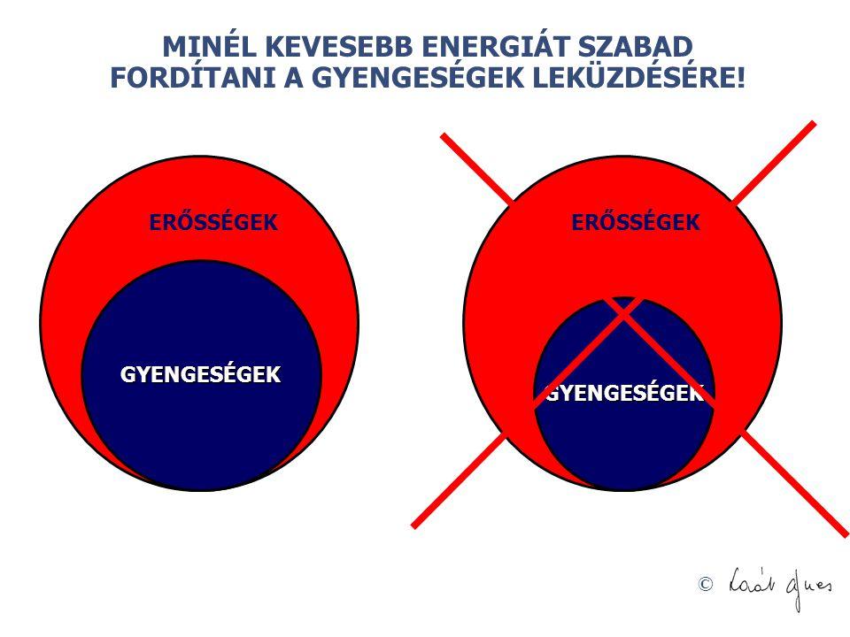 MINÉL KEVESEBB ENERGIÁT SZABAD FORDÍTANI A GYENGESÉGEK LEKÜZDÉSÉRE!