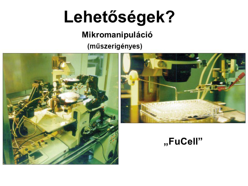"""Lehetőségek Mikromanipuláció (műszerigényes) """"FuCell"""