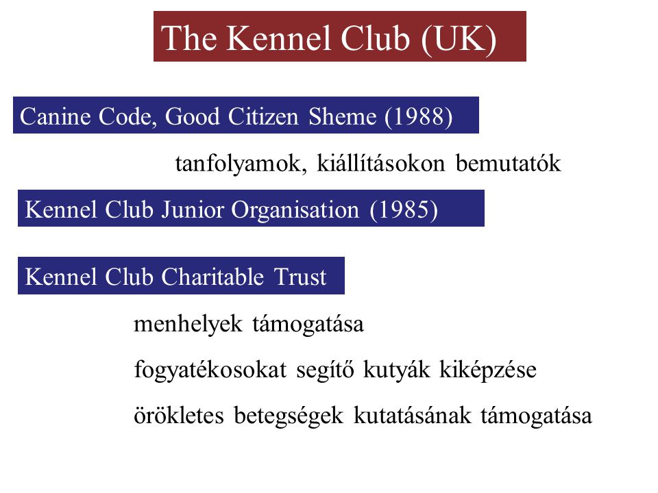 The Kennel Club (UK) Canine Code, Good Citizen Sheme (1988)