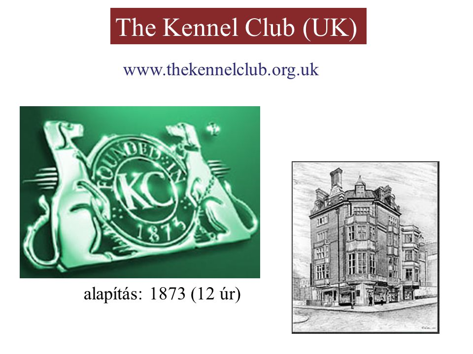The Kennel Club (UK) www.thekennelclub.org.uk alapítás: 1873 (12 úr)