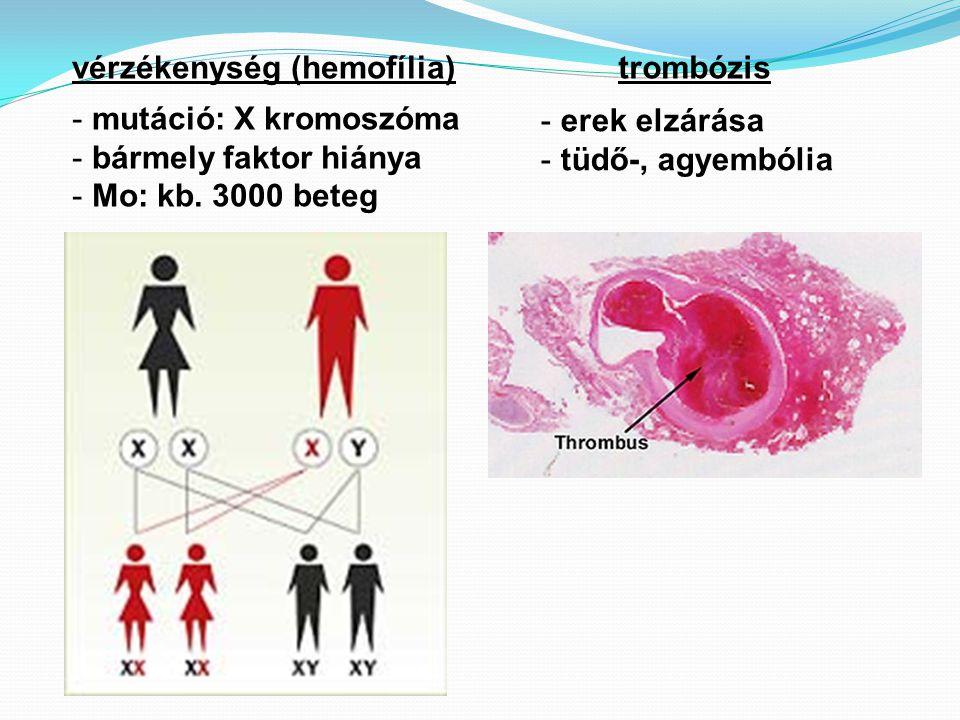 vérzékenység (hemofília)