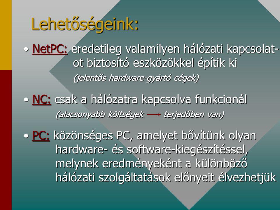Lehetőségeink: NetPC: eredetileg valamilyen hálózati kapcsolat- ot biztosító eszközökkel építik ki (jelentős hardware-gyártó cégek)