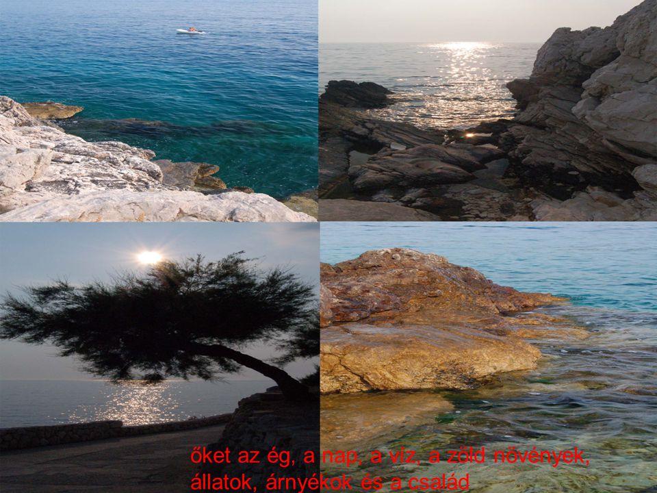 őket az ég, a nap, a víz, a zöld növények, állatok, árnyékok és a család