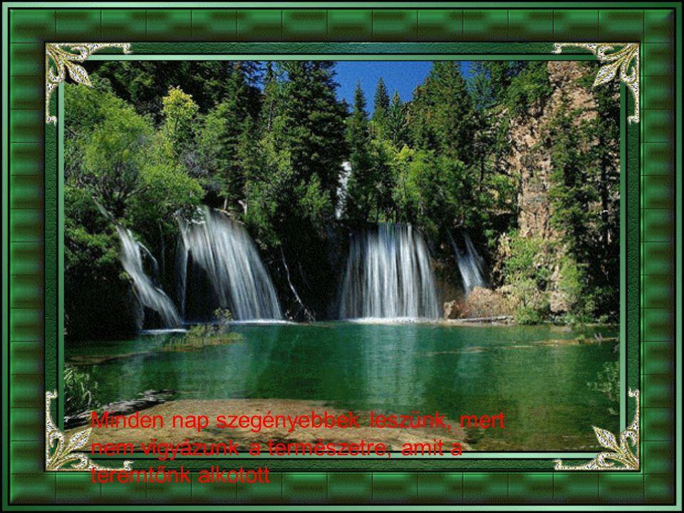 Minden nap szegényebbek leszünk, mert nem vigyázunk a természetre, amit a teremtőnk alkotott