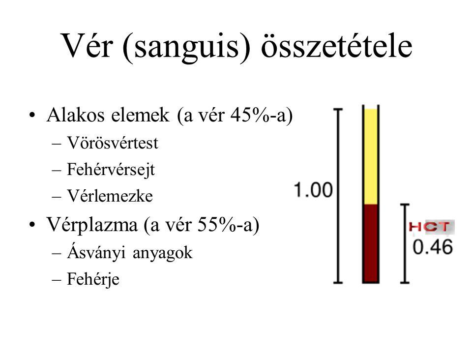 Vér (sanguis) összetétele