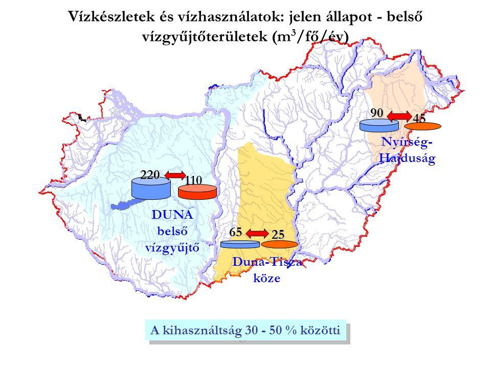 Vízkészletek és vízhasználatok: jelen állapot - belső