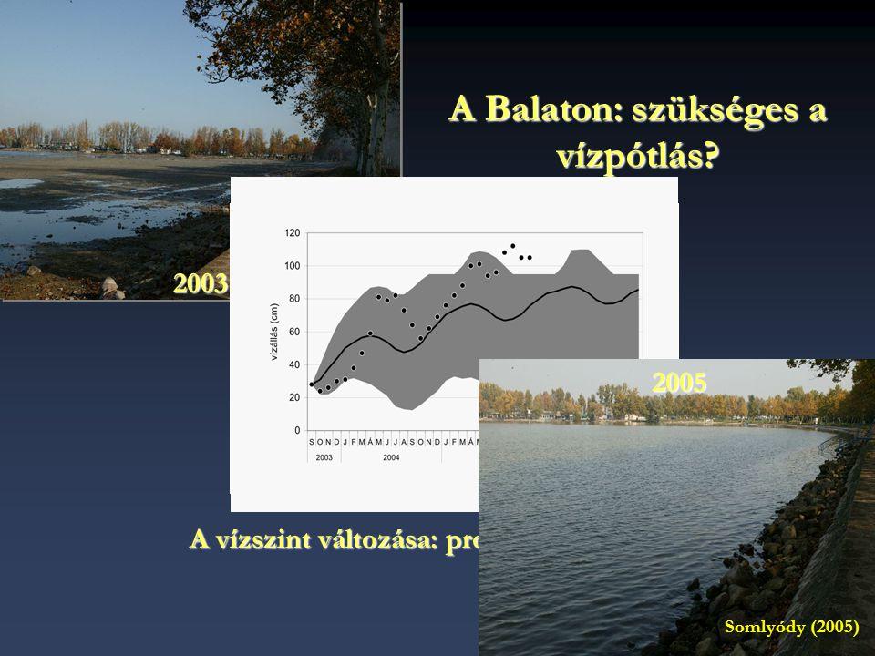 A Balaton: szükséges a vízpótlás
