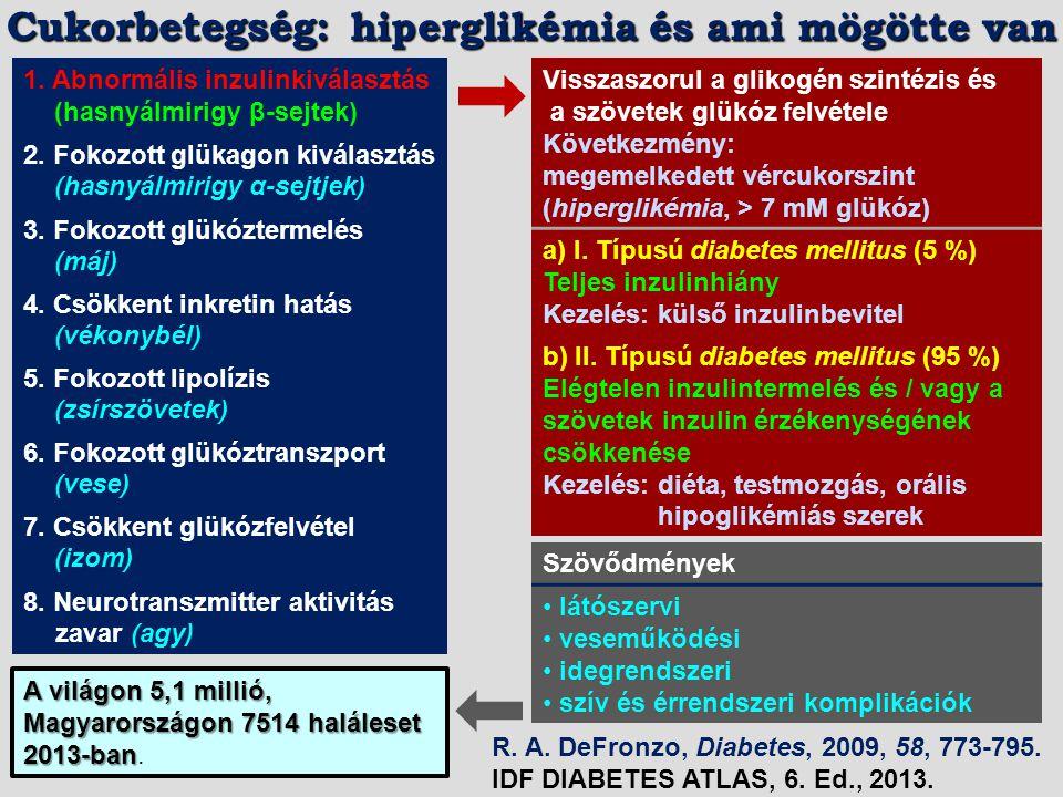 Cukorbetegség: hiperglikémia és ami mögötte van