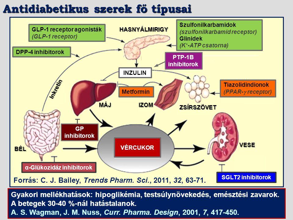 Antidiabetikus szerek fő típusai