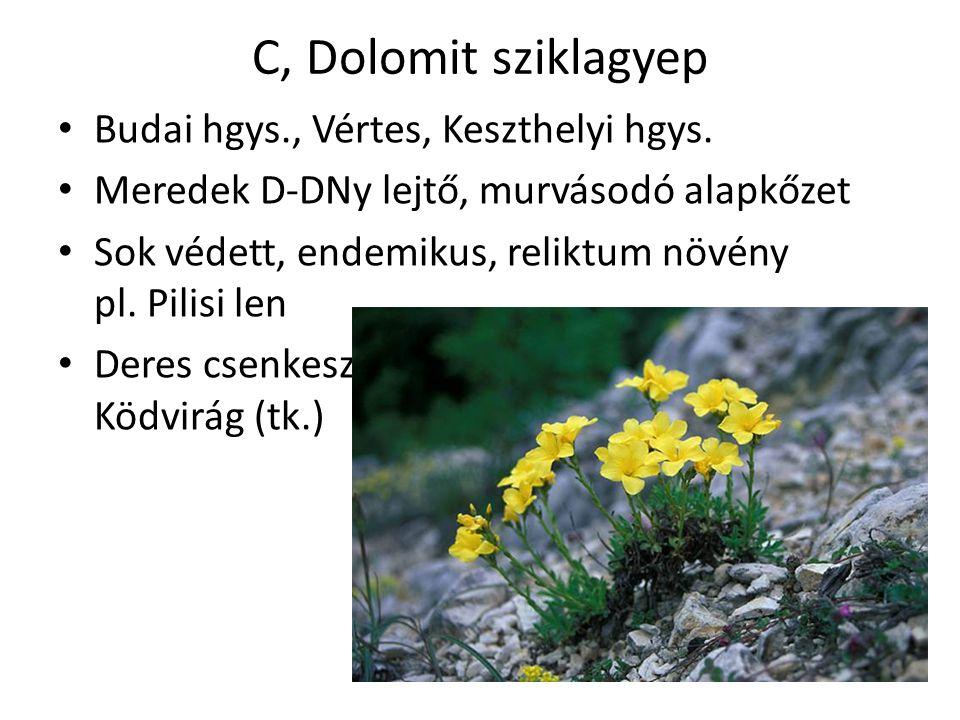 C, Dolomit sziklagyep Budai hgys., Vértes, Keszthelyi hgys.