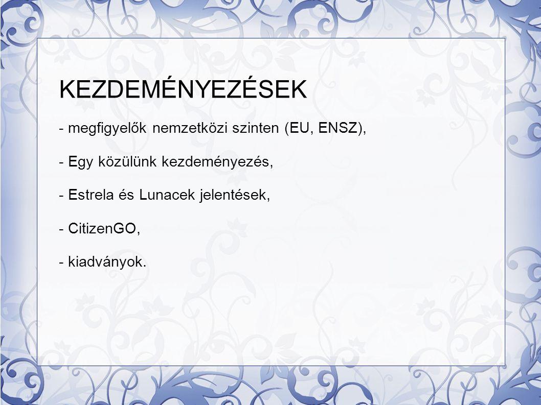 KEZDEMÉNYEZÉSEK - megfigyelők nemzetközi szinten (EU, ENSZ),