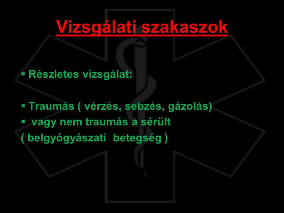 Vizsgálati szakaszok Részletes vizsgálat: