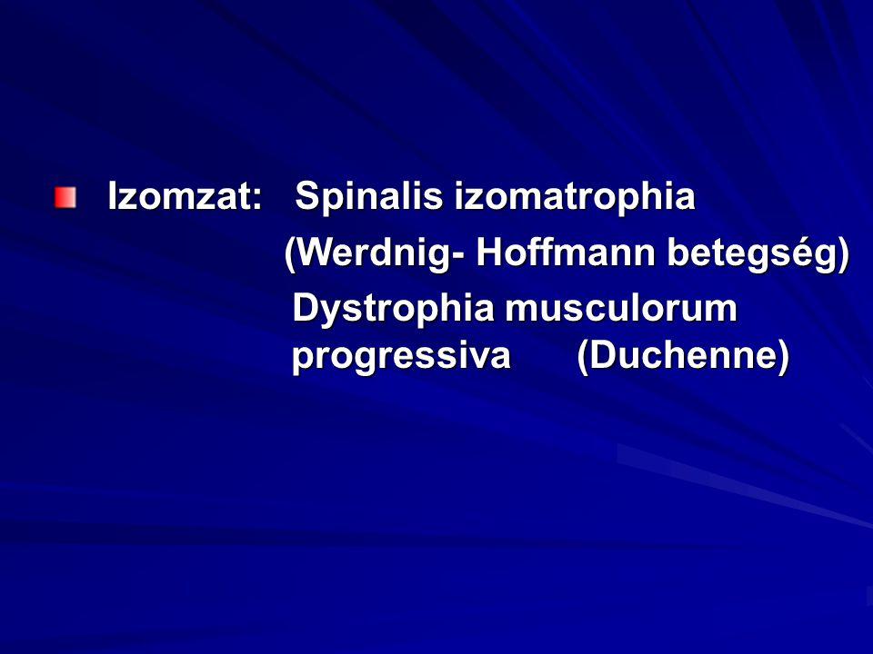 Izomzat: Spinalis izomatrophia