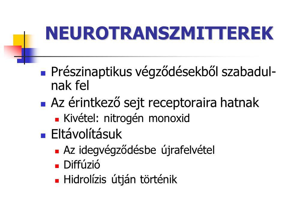 NEUROTRANSZMITTEREK Prészinaptikus végződésekből szabadul-nak fel