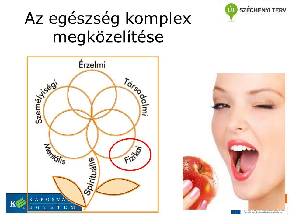 Az egészség komplex megközelítése