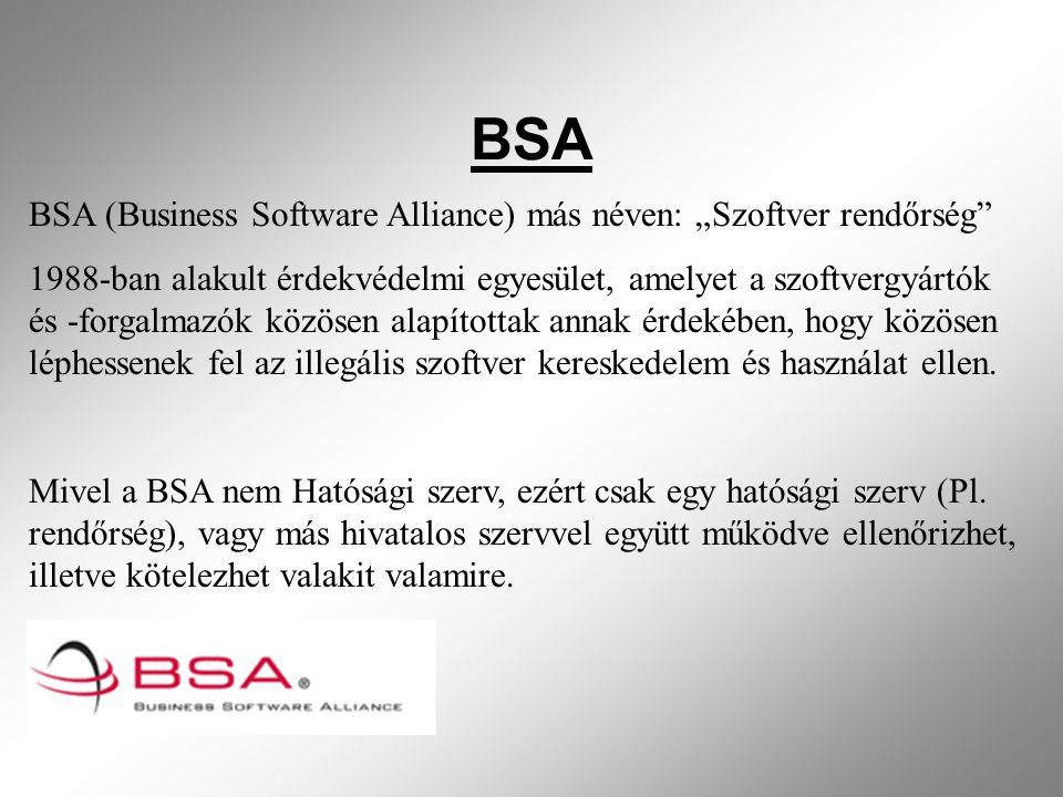 """BSA BSA (Business Software Alliance) más néven: """"Szoftver rendőrség"""
