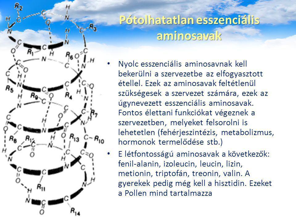 Pótolhatatlan esszenciális aminosavak