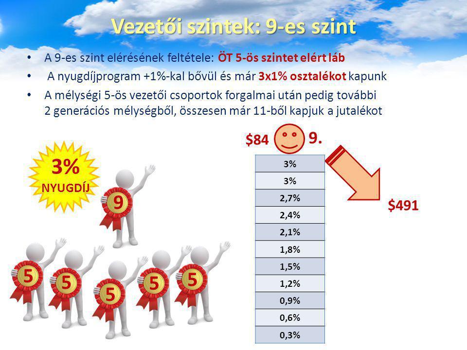 Vezetői szintek: 9-es szint