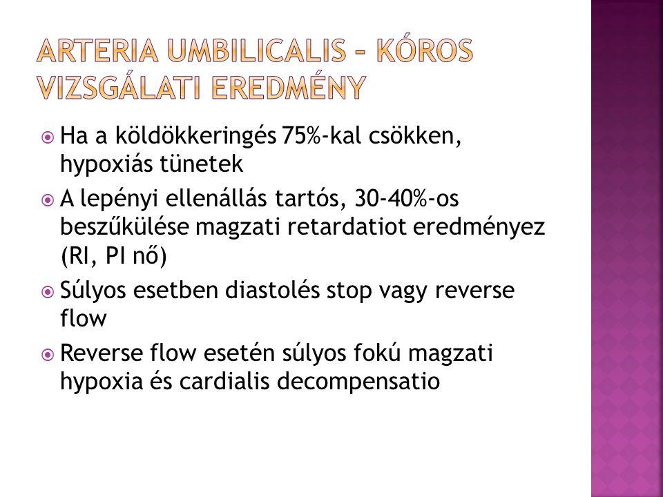 Arteria umbilicalis – kóros vizsgálati eredmény