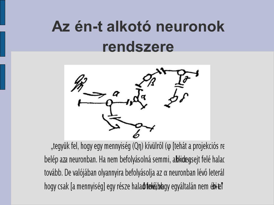 Az én-t alkotó neuronok rendszere