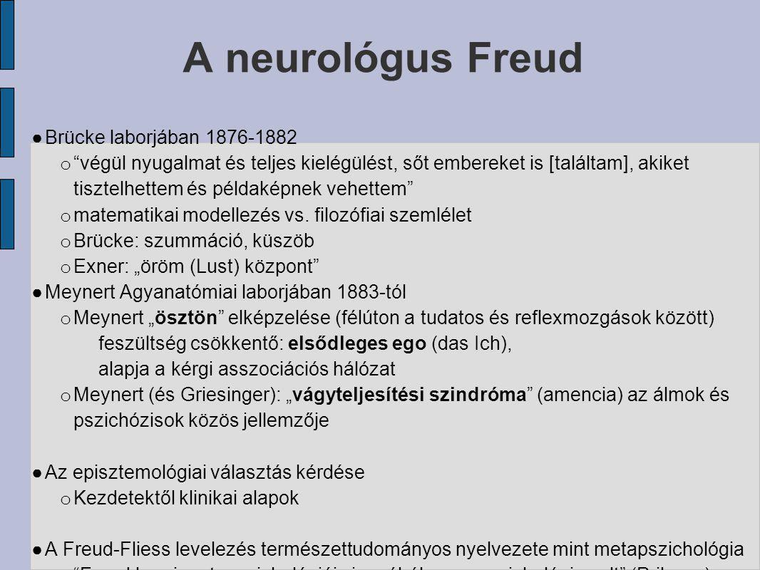 A neurológus Freud Brücke laborjában 1876-1882