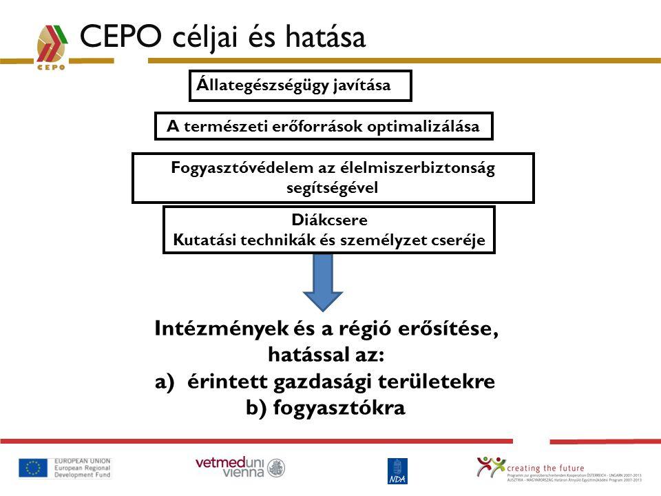 CEPO céljai és hatása Intézmények és a régió erősítése, hatással az: