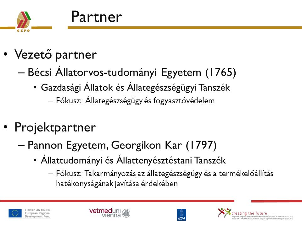 Partner Vezető partner Projektpartner