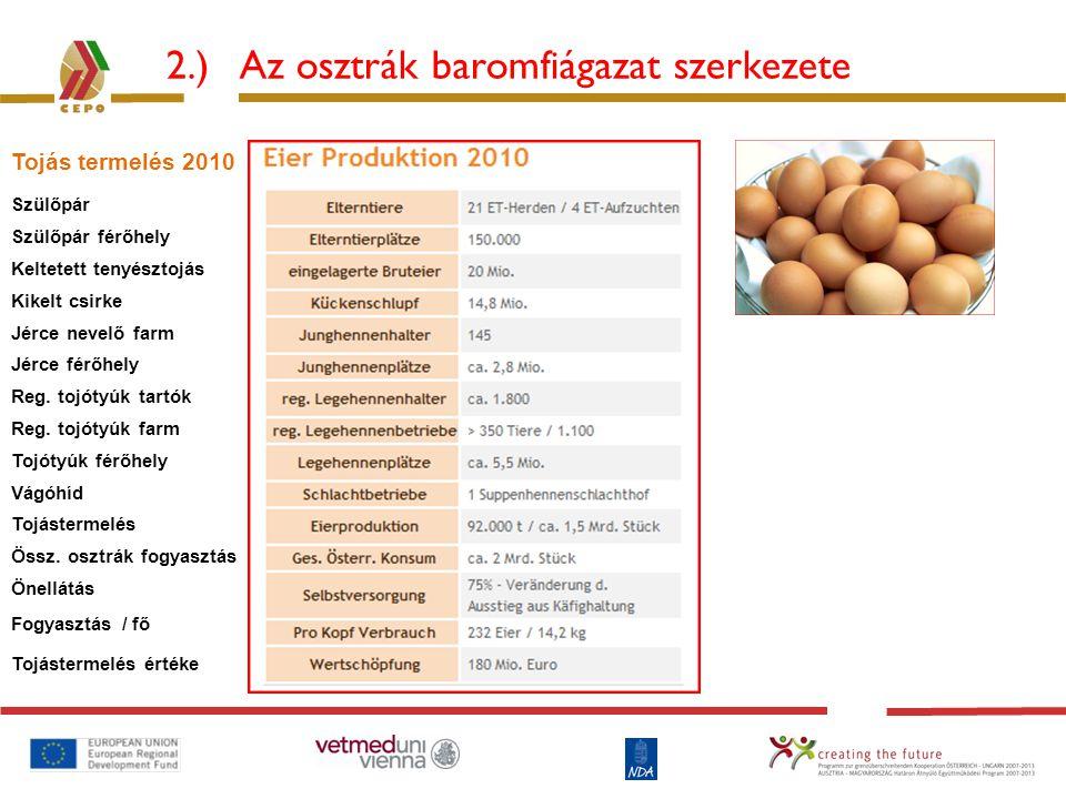 2.) Az osztrák baromfiágazat szerkezete