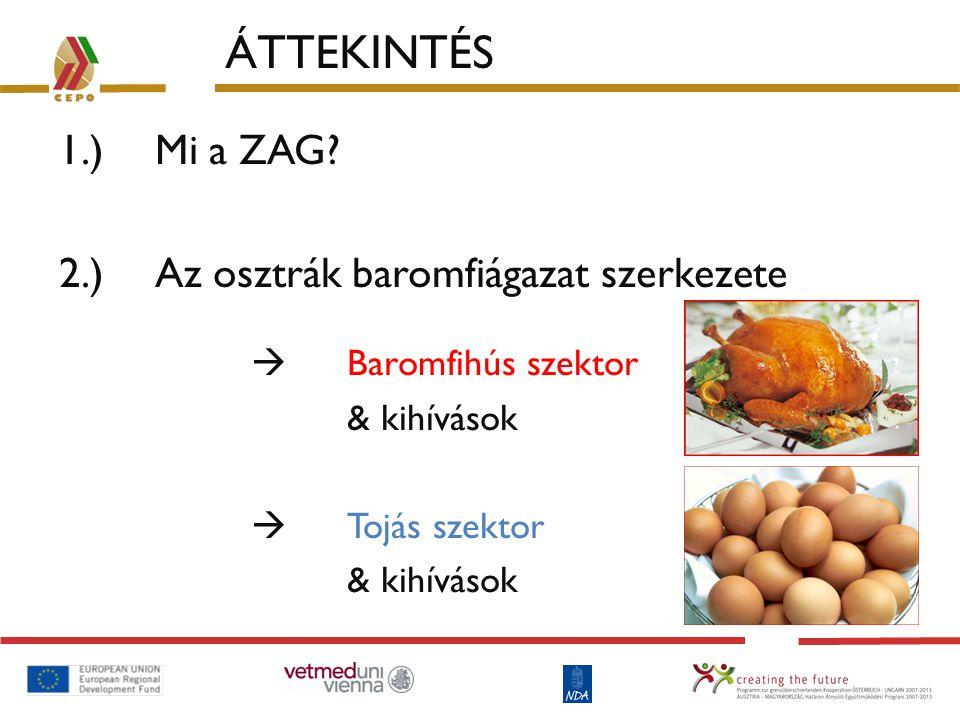 ÁTTEKINTÉS 1.) Mi a ZAG 2.) Az osztrák baromfiágazat szerkezete