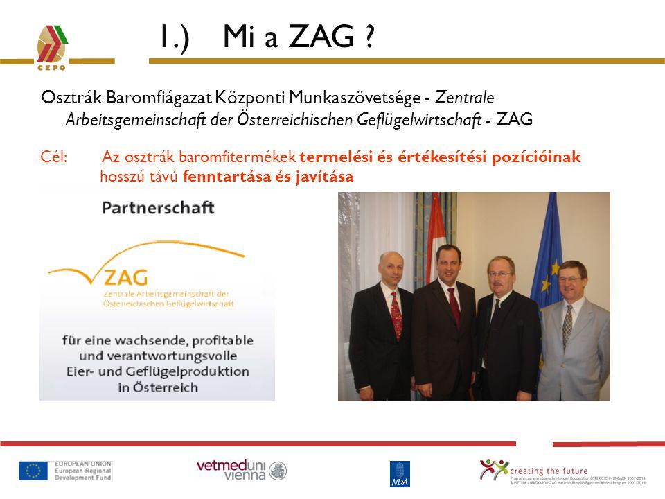 1.) Mi a ZAG Osztrák Baromfiágazat Központi Munkaszövetsége - Zentrale Arbeitsgemeinschaft der Österreichischen Geflügelwirtschaft - ZAG.