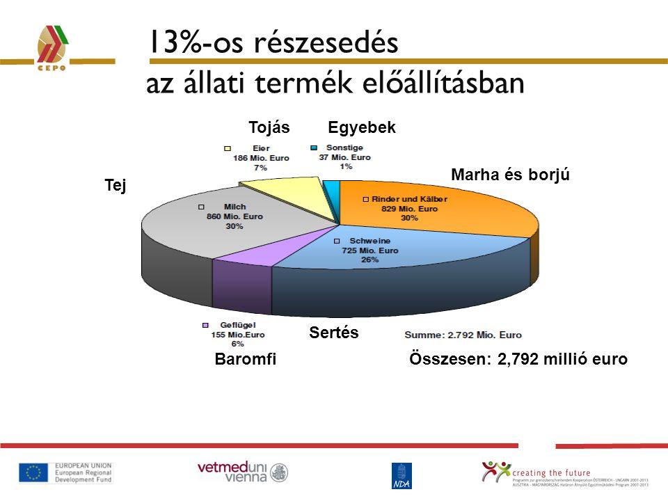 13%-os részesedés az állati termék előállításban