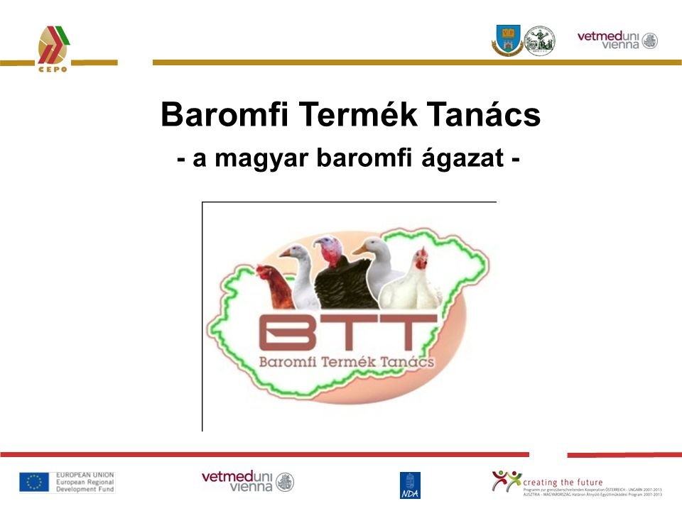 Baromfi Termék Tanács - a magyar baromfi ágazat -