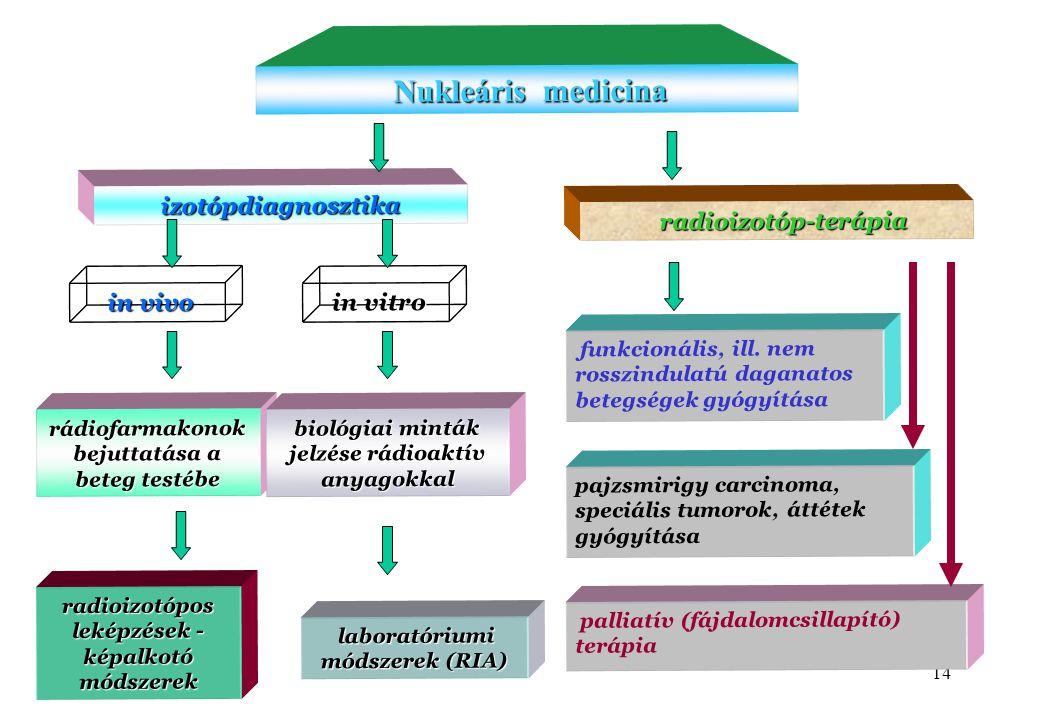 Nukleáris medicina izotópdiagnosztika radioizotóp-terápia in vivo