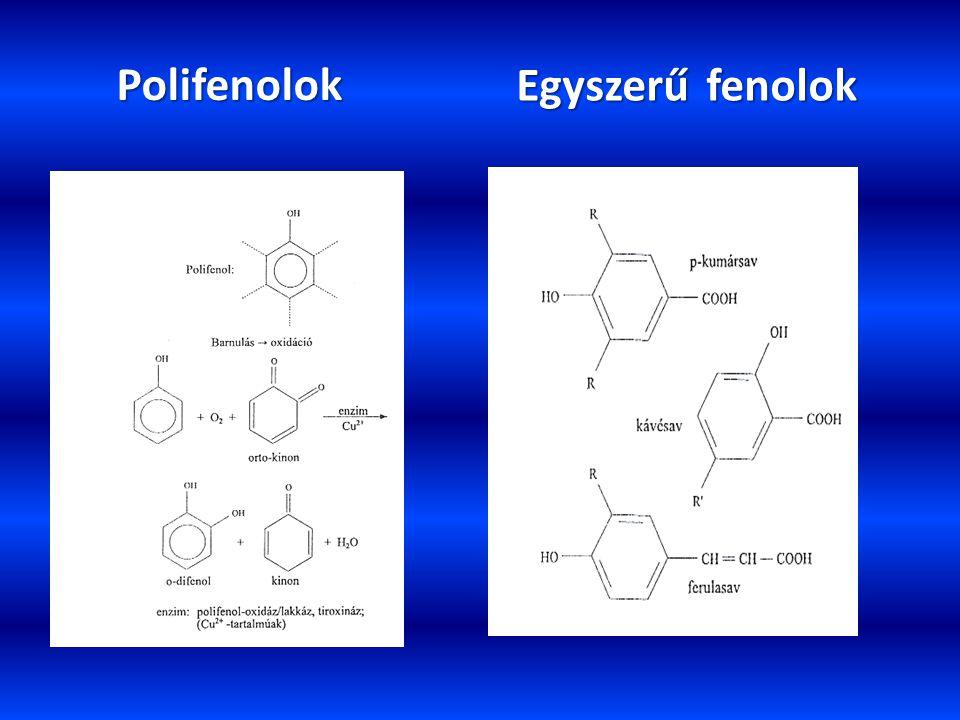 Polifenolok Egyszerű fenolok