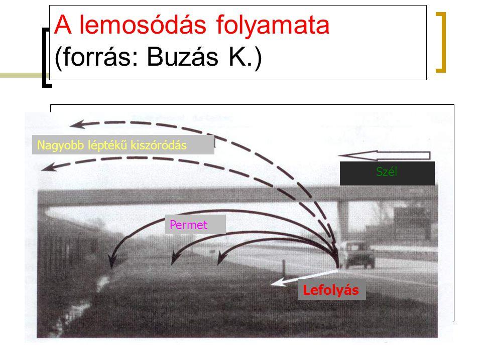 A lemosódás folyamata (forrás: Buzás K.)