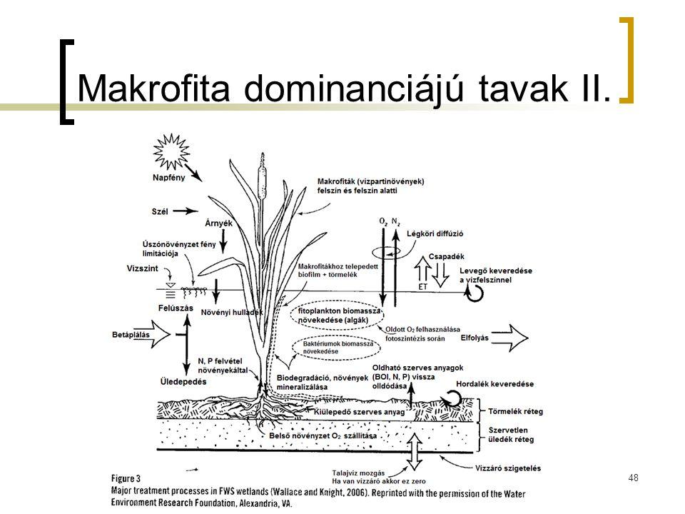 Makrofita dominanciájú tavak II.