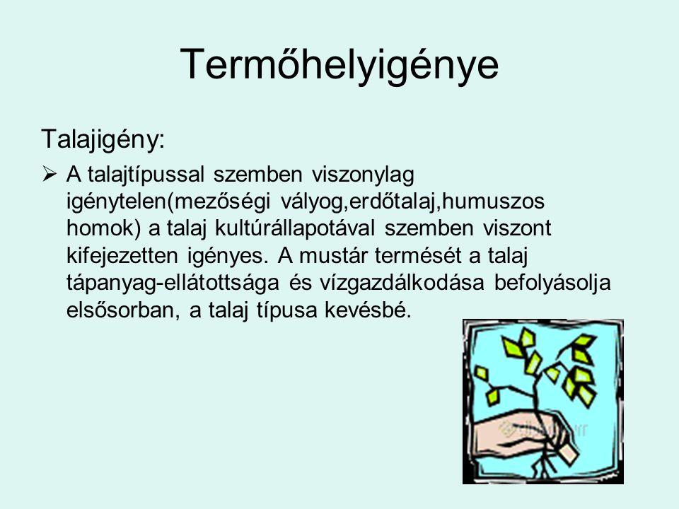 Termőhelyigénye Talajigény: